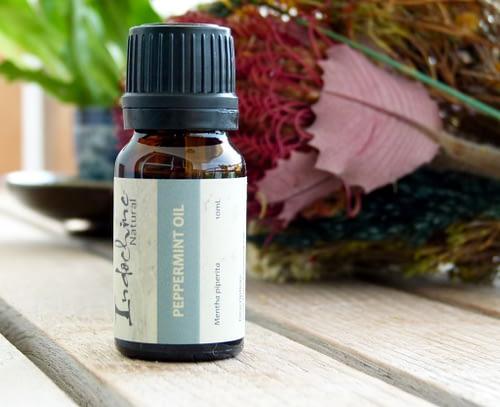 Peppermint essential oil - Tinh dầu Bạc hà