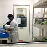 Kiểm nghiệm vi sinh trong mỹ phẩm tắm và sản phẩm làm đẹp nói chung